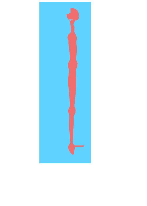 環 イメージ